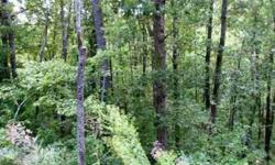 -Nice sized lot in a great subdivision only ten minutes from downtown Asheville. There is underground fiber optic cable installed and four homes are built or are being built! Paved roads, city water and in a perfect location. Come see!