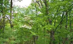 20 ACRES OF WOODED LAND LOTS OF PRIVACY AT A GREAT PRICE Listing originally posted at http