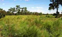 6 acres +/- fenced with wire. Electric at the street. 130 ft street frontage. Backs up to grove, mostly flat land. Drainage ditch that flows out of a pond behind property into Lake Buffum.