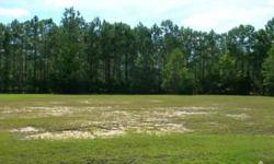 Build the 2000+ sq ft home of your dreams with the builder of your choice on this custom Fairway & water view lot located on the 6th fairway of theDogwood.The more than 1750 acres which comprise Brunswick Plantation & Golf Resort are nestled among oaks,