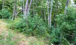 Nice size lot in great subdivision ten minutes from downtown Asheville. There is underground fiber optic cable installed and four homes are built or are being built! Paved roads, city water and in a perfect location. Come see!