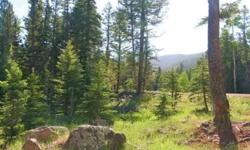 Short sale valley of the utes lot. 2.35 acres with phone and electric at the lot.