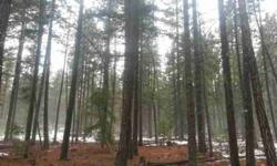 21 acres of nice standing timber that corners large track of timber co for recreational activities. Listing originally posted at http