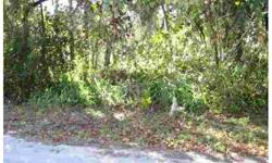 This .18 acre lot is located on a paved road. Perfect for investment, home, mobile home or rental. Adjacent lot is available (same seller) to create a unique expansive home site or package sale.