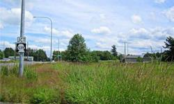 Amazing land opportunity. Build your dream space on 1.3 acres of lush grass and trees. Corner lot. Perfect location between Bellingham, Ferndale and Lynden! It's time to invest!