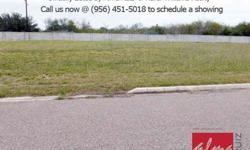 Location location location!!! Huge lots.....approx 1/3 of an acre in edinburg near the corner of 10th street and freddy gonzalez.