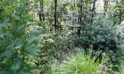 Nice laying lot in a great subdivision ten minutes from downtown Asheville. There is underground fiber optic cable installed and four homes are built or are being built! Paved roads, city water, septic and priced right! Come see!