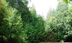 End of road privacy on oversized lot in kala point w/ magnificent trees. Listing originally posted at http