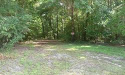 Vacant LotBeautiful privacy and quick walk to Oleno State Park Boat Ram. Approximately 200 wide and well over 400 deep. Heavy with large magnificent trees between 40-60 ft. tall. Electricity in the Street. There is a capped well.Priced to Sell