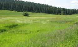 Have you own place up off of Forker Rd. Intersection of Forker and Foothills Rd. A Creek runs through it with some high ground. Bring the animals. Sold individually or with 20 Acres MOL at 13311 N Forker.Listing originally posted at http