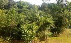 BANK OWNED. WOODED TRACT WITH CREEK. SEE LISTING #3128554 FOR ADJOINING 31 ACRE TRACT. BRING OFFER!Listing originally posted at http