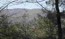 Large 1.7+ acre lot with sweeping views of Panthertail Mtn., Cold Mtn. and Toxaway Mtn. Close to club with good privacy. Water tap included in price. Home is part of Club Colony and buyer must build a Club Colony Design. Call today for more info.Listing