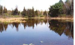 88 acres, State Route 149, Granville, NYGorgeous pond, dozens of wild apple trees and nature trails, rows of mature mature white pine trees (perfect for a log cabin or hunting cabin).