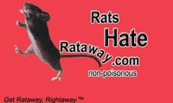 1. What is Rataway Fragrance 2. Rataway fragrance is a natural liquid deodorant that has been successful in preventing odors caused by rats, mice, squirrels, dogs, cats, raccoons, opossums, horses and other small rodents that infest and chew on wood,