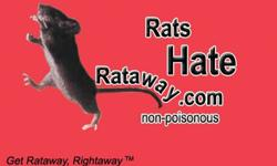 1. What is Rataway Fragrance2. Rataway fragrance is a natural liquid deodorant that has been successful in preventing odors caused by rats, mice, squirrels, dogs, cats, raccoons, opossums, horses and other small rodents that infest and chew on wood,